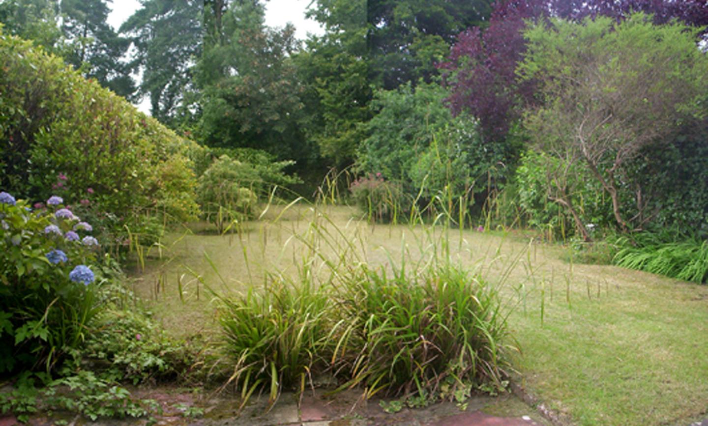 The garden before lockdown