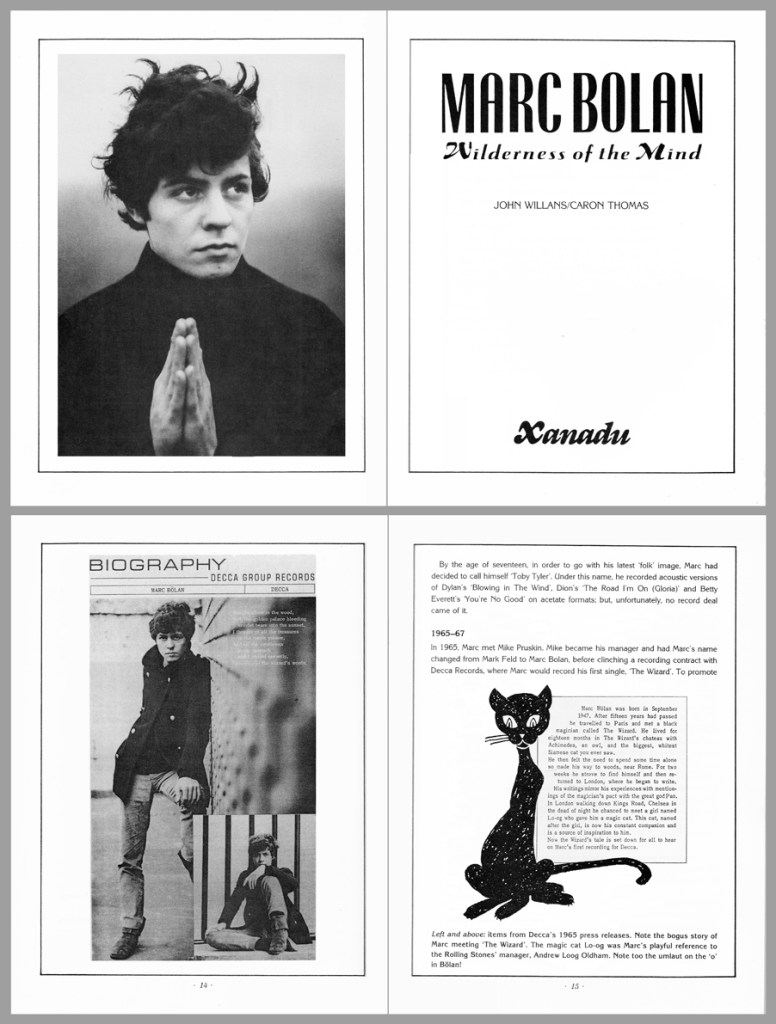 spreads from Marc Bolan book